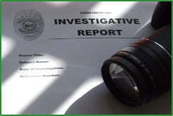 Private Investigator Report